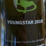 Youngstar 2018